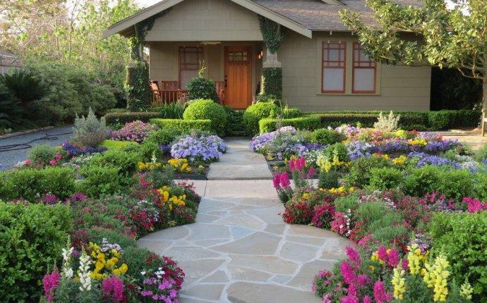 Цветы на даче (60 фото): создаем райский уголок - HappyModern