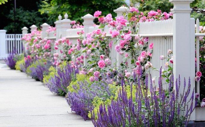 Товары для сада в Леруа Мерлен