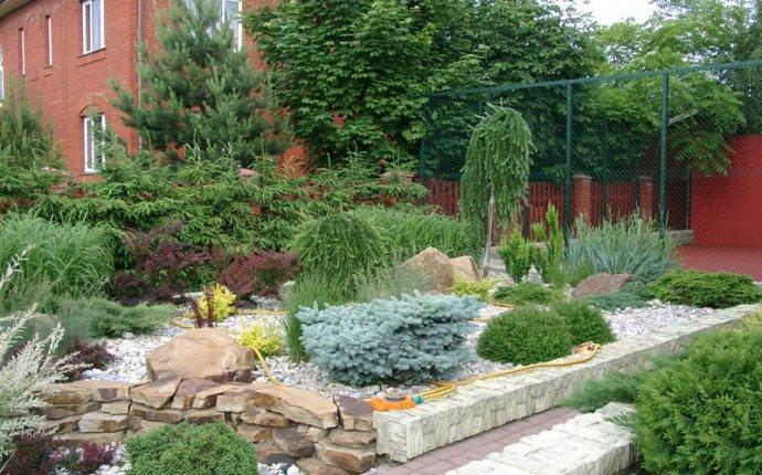 Все о ландшафтном дизайне на даче » Уход за комнатными растениями